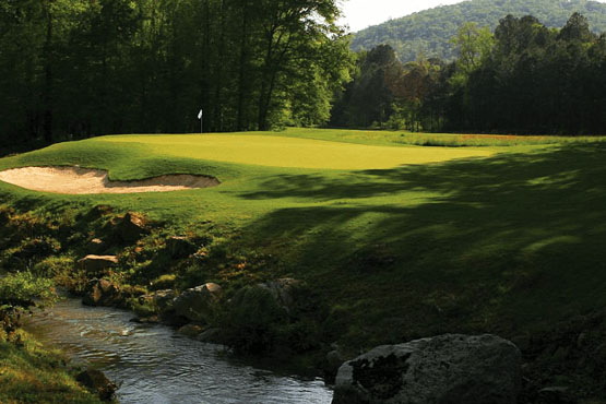green at Limestone Springs Golf Course